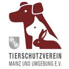(c) Tierheim Mainz e.V.