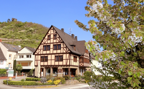 (c) Ferienwohnung-Rheingau-Mohr.de - Brigitte Mohr